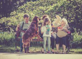 Welche Hunderassen sind für Familien geeignet und welche nicht?