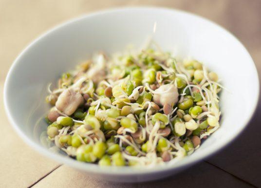 Vegane Ernährung und der Bedarf an Vitamin-B12